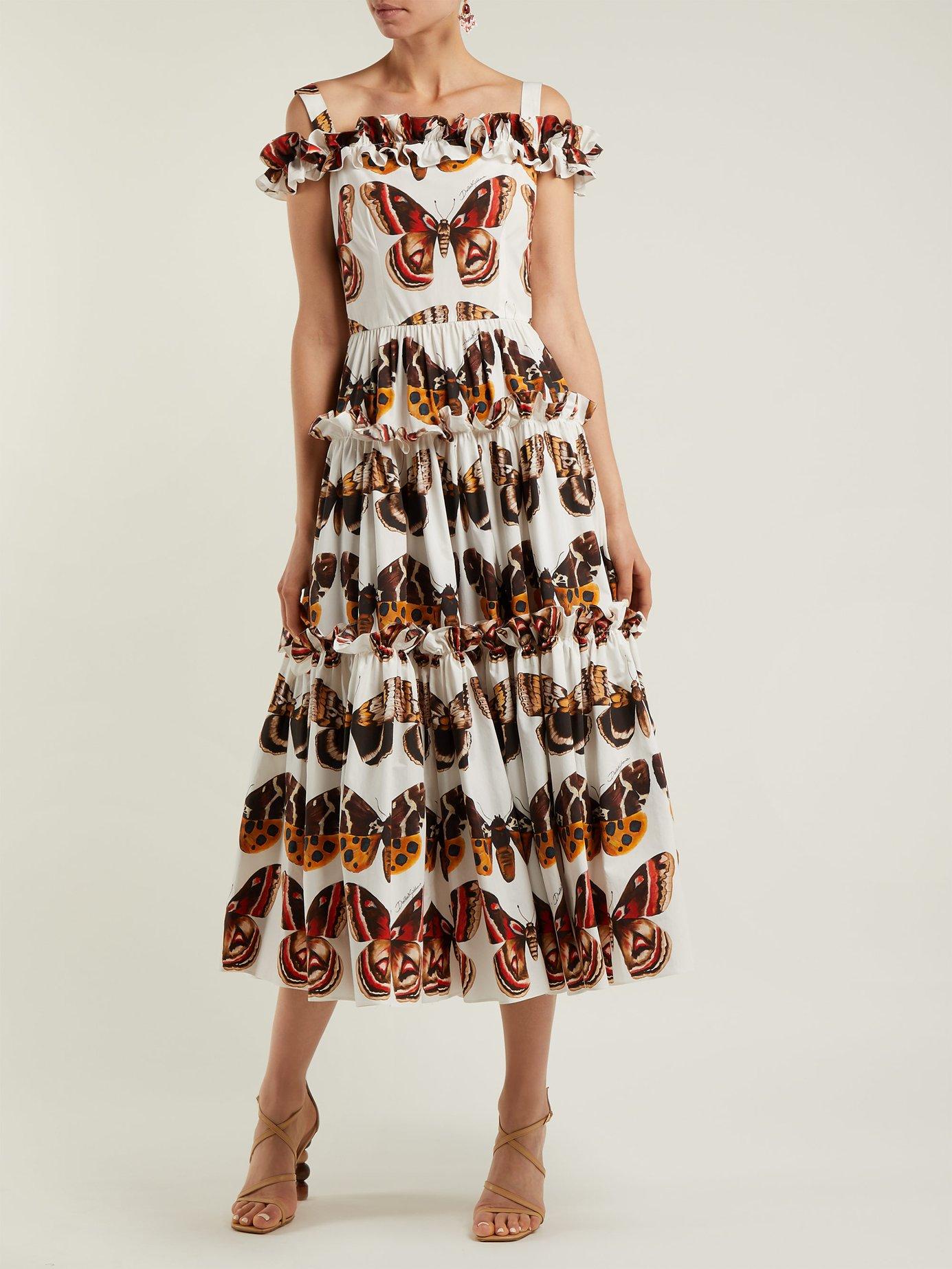 Butterfly-print cotton-poplin dress by Dolce & Gabbana