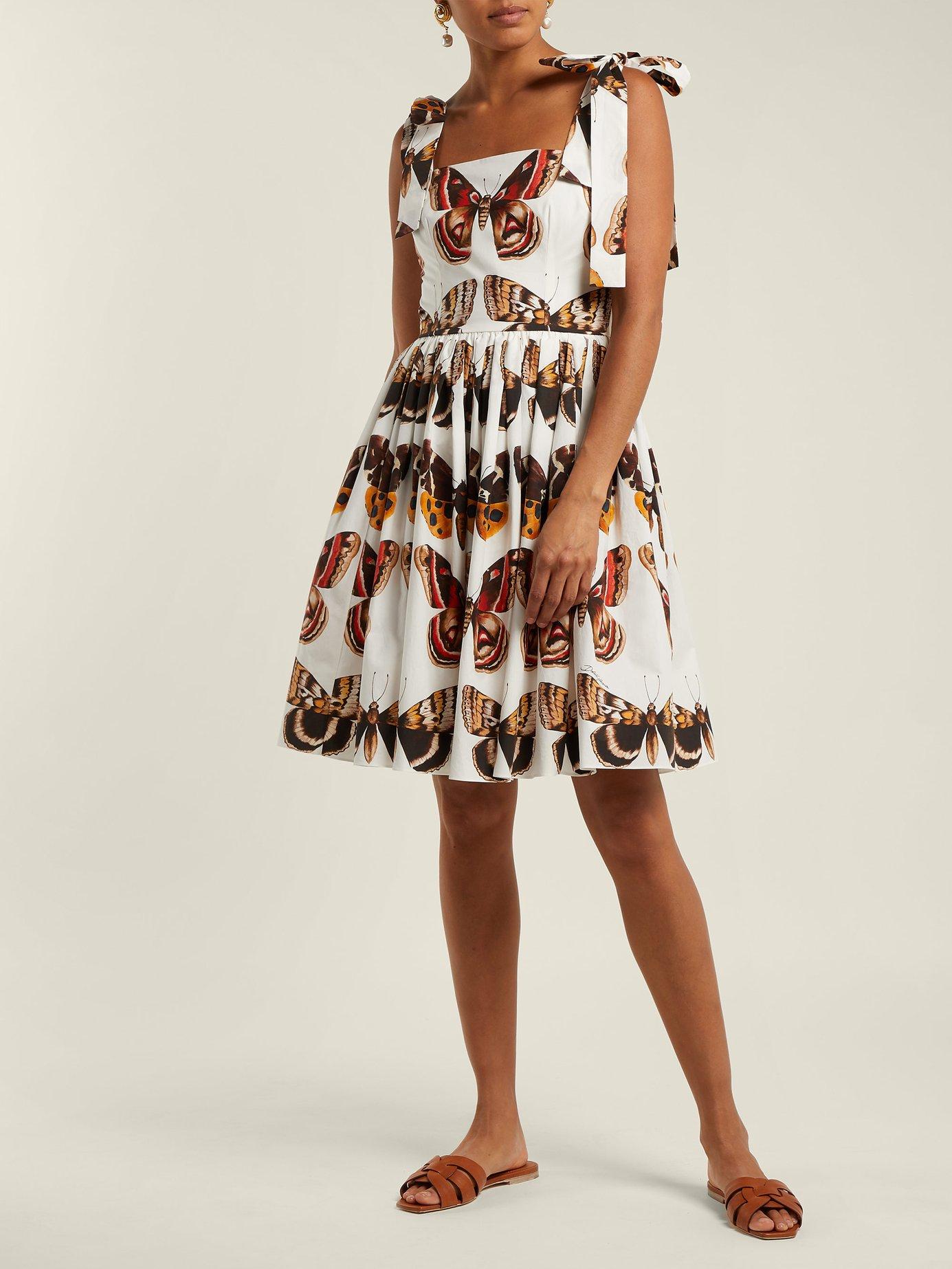 Butterfly-print cotton-poplin mini dress by Dolce & Gabbana